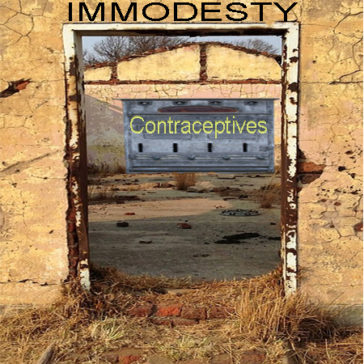Immodesty – the doorway to contraception?