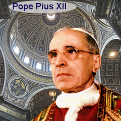 Article 73 – Pope Pius XII on Family