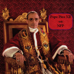 Article 74 – Pope Pius XII on Family 2