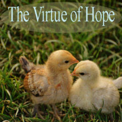 Article 79 – Marriage! – The Virtue of Hope