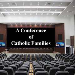Article 101 – Catholic Family Conference